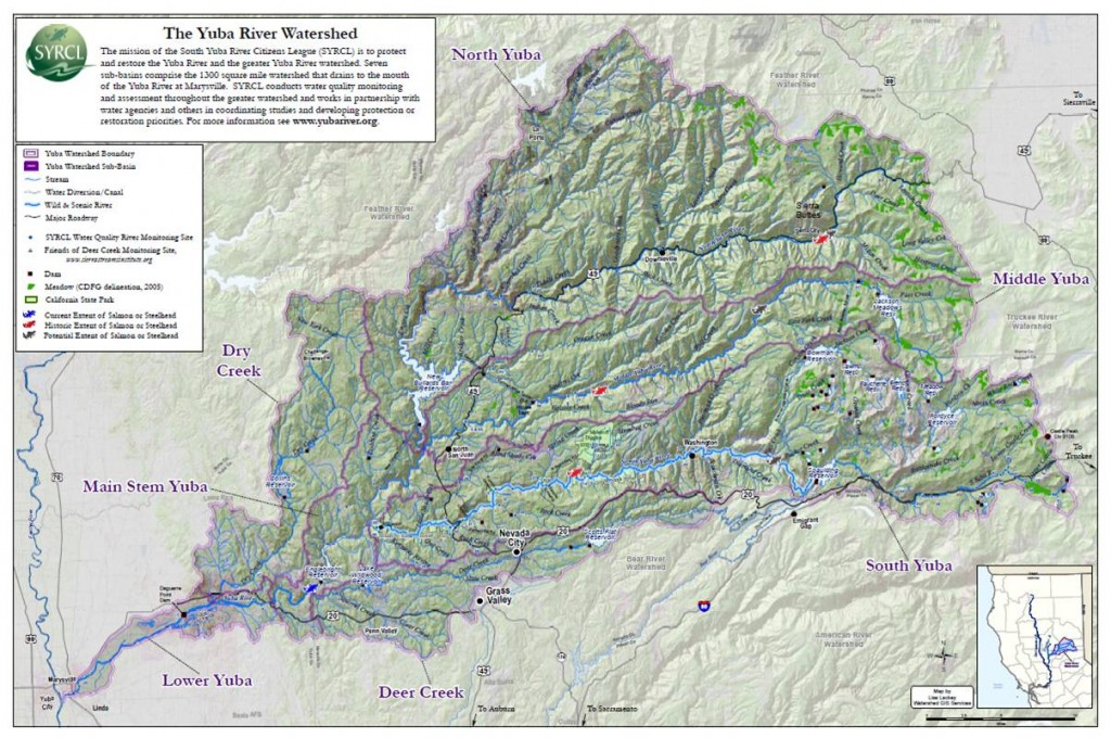 Local Chapter Report: Bloom Yuba Watershed, California