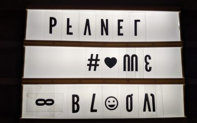 Bloom Network Afterparty + Planet Home